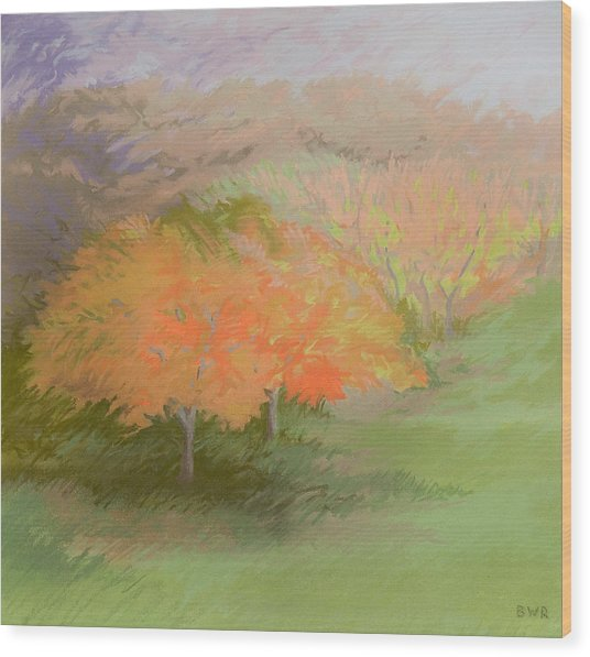 Spring Trees Wood Print by Bruce Richardson