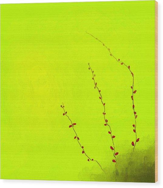 Spring Twigs Wood Print