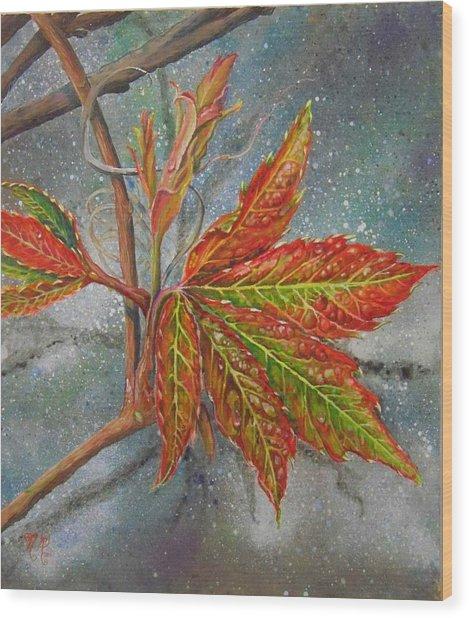 Spring Virginia Creeper Wood Print