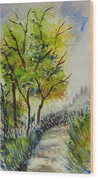 Spring Walk Wood Print by Catherine Arcolio