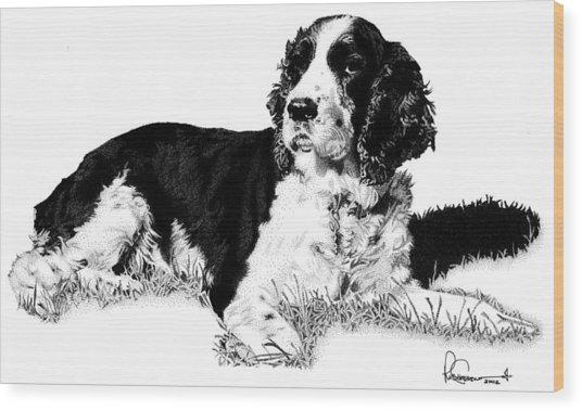 Springer Wood Print by Rob Christensen