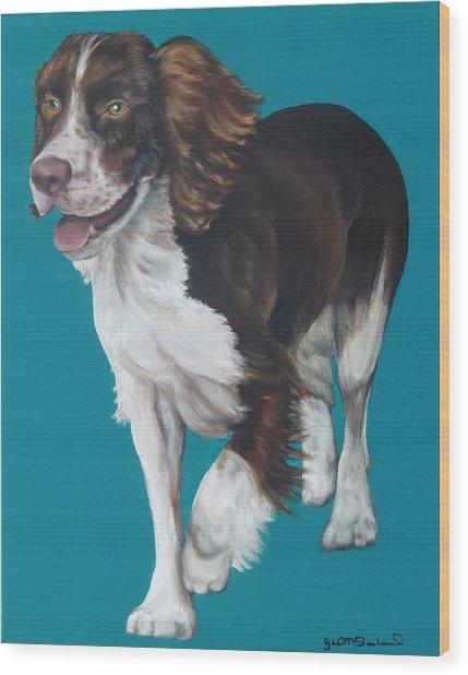 Springer Spaniel Wood Print by Gail Mcfarland