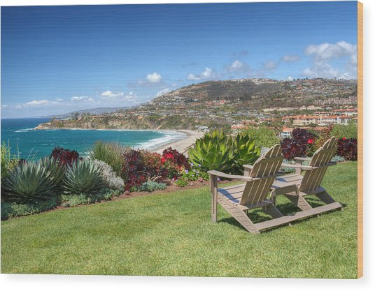 Springtime At Salt Creek Beach Wood Print