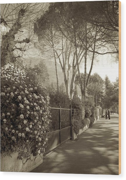 Springtime In Montreux Wood Print