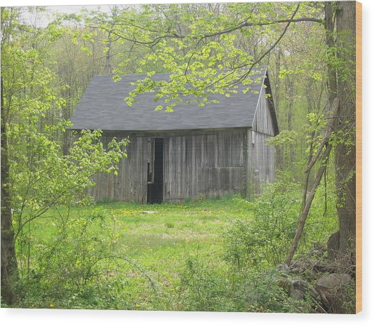 Springtime In New England Wood Print by Marjorie Tietjen