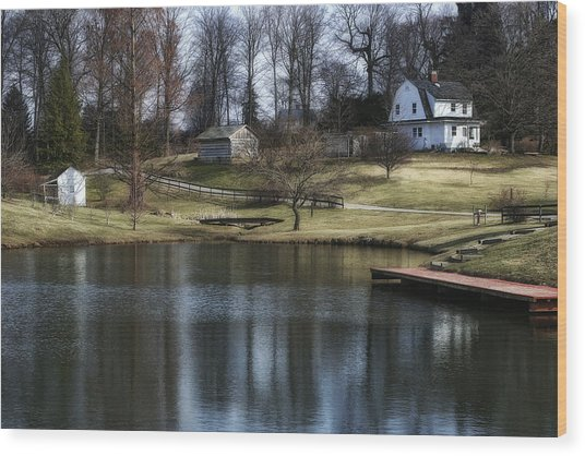 Springtime In Ohio Wood Print