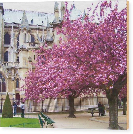 Springtime In Paris Wood Print