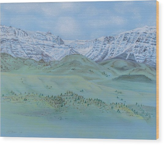 Springtime In The Rockies Wood Print