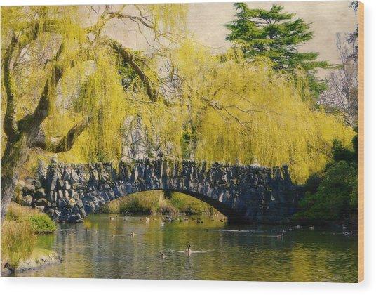 Springtime In Victoria Wood Print