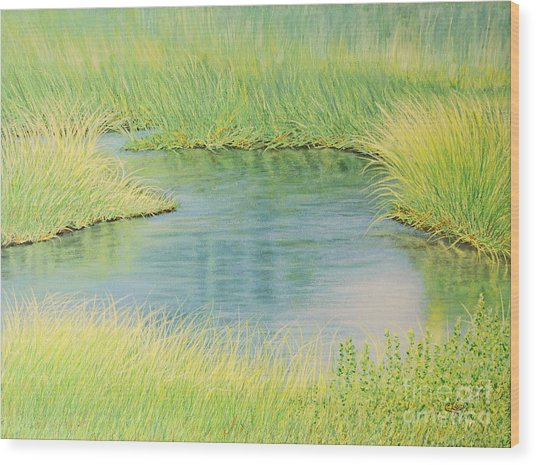 Springtime Marsh-new Beginnings Wood Print