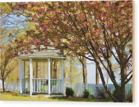 Springtime Southern Style Wood Print by Dan Holland