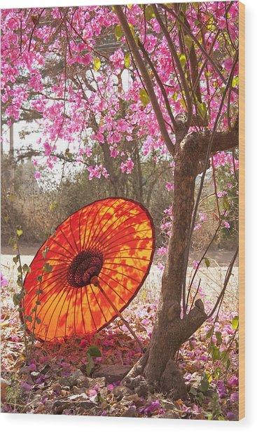 Springtime Umbrella Wood Print