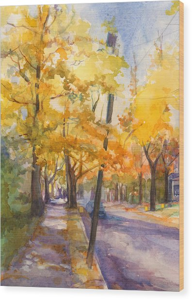 Spruce Street Maples #2 Wood Print