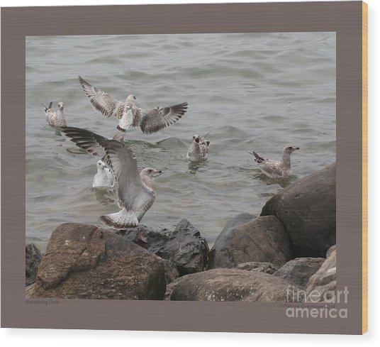 Squabbling Gulls Wood Print