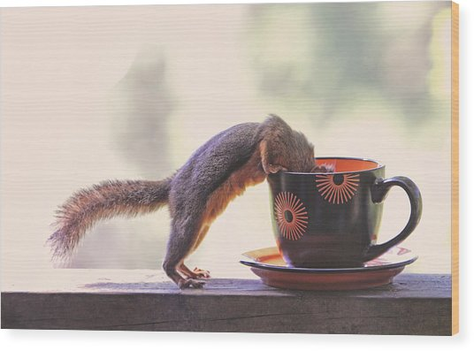 Squirrel And Coffee Wood Print