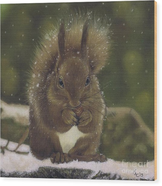 Squirrel Nutkin Wood Print