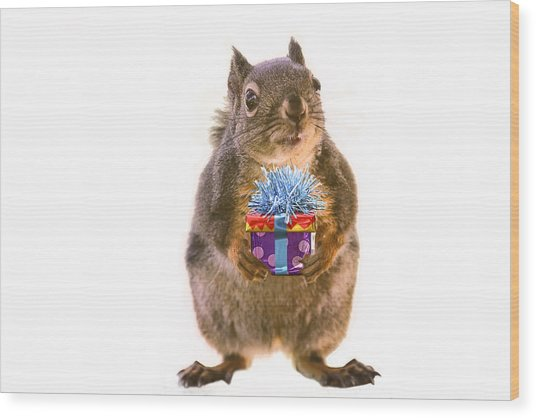 Squirrel With Gift Wood Print