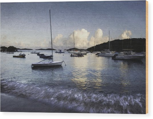 St. John's Bay Wood Print