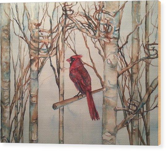 St Louis Cardinal Redbird Wood Print