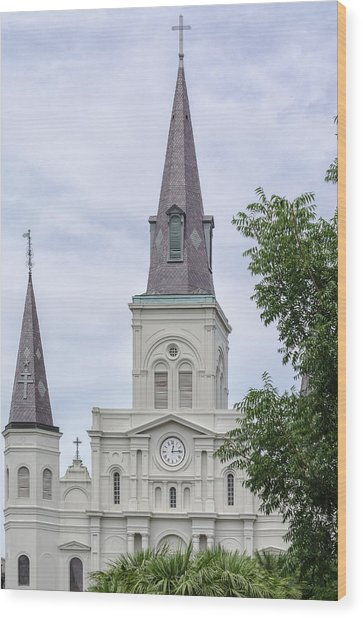 St. Louis Cathedral Through Trees Wood Print