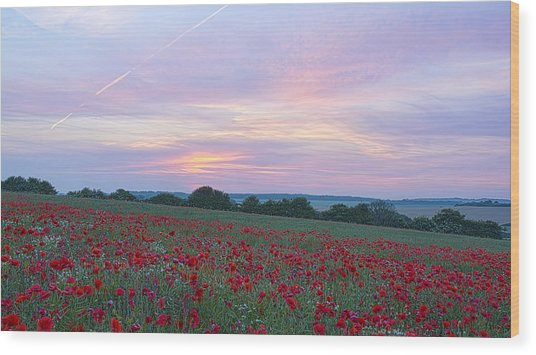 St Margarets Poppies Wood Print
