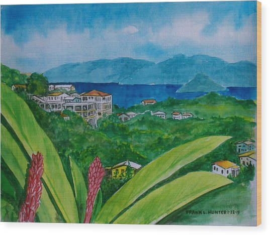 St. Thomas Virgin Islands Wood Print