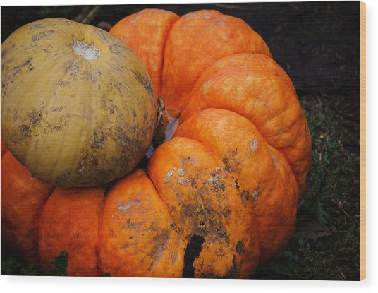 Stacked Pumpkins Wood Print