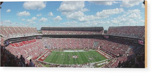 Stadium Panorama View Wood Print