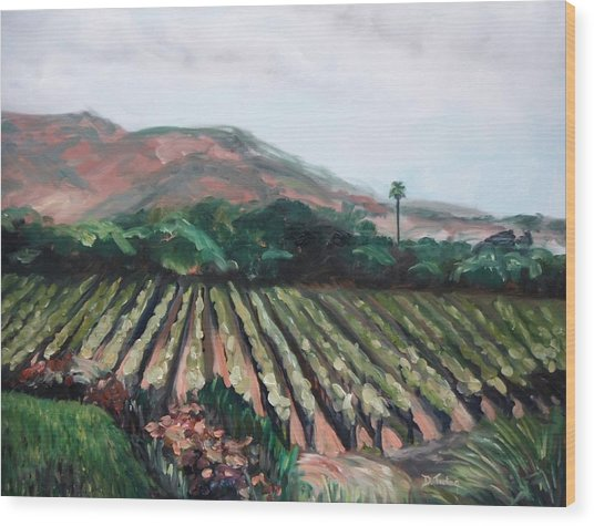 Stag's Leap Vineyard Wood Print