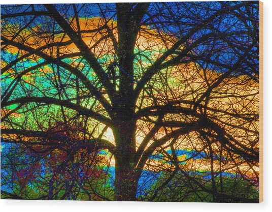 Stained Glass Tree Wood Print
