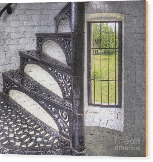 Stairs At Peninsula Point Wood Print