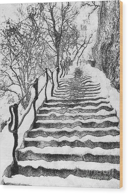 Stairs In Winter Wood Print