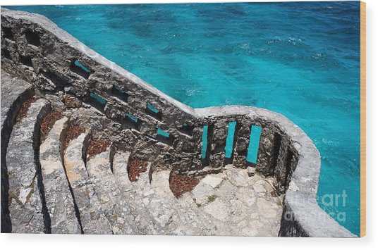 Stairs To The Sea Wood Print