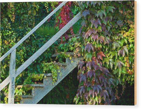 Stairs2 Wood Print