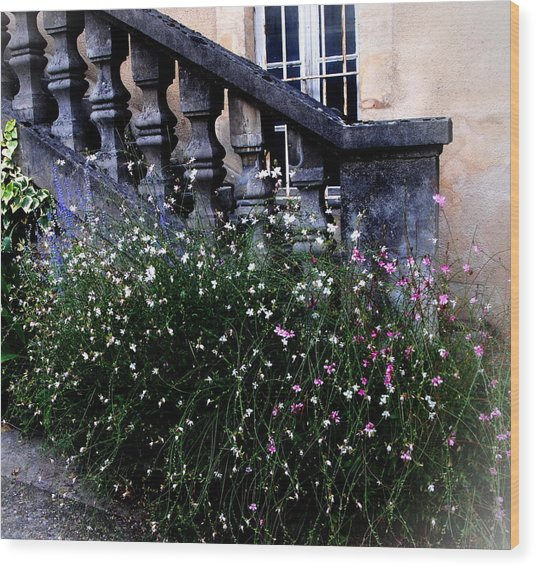 Stairway In Sarlat France Wood Print by Jacqueline M Lewis