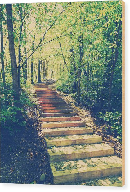 Stairway Into The Forest Wood Print