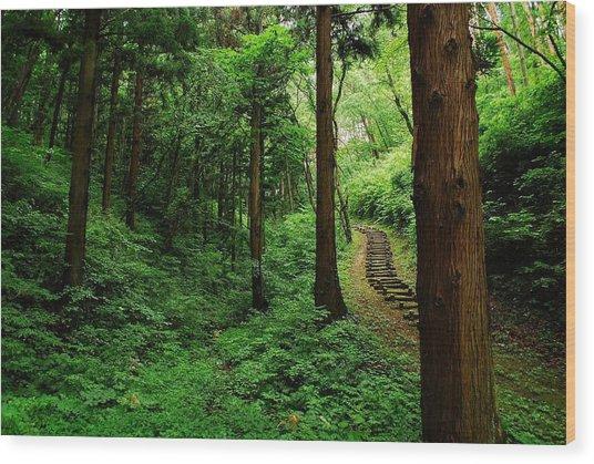 Stairway To Healing Wood Print