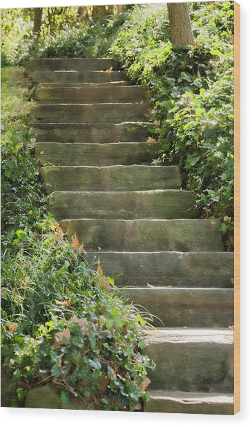 Stairway To Heaven Wood Print by Elin Mastrangelo