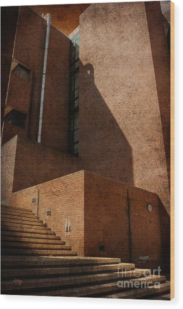 Stairway To Nowhere Wood Print