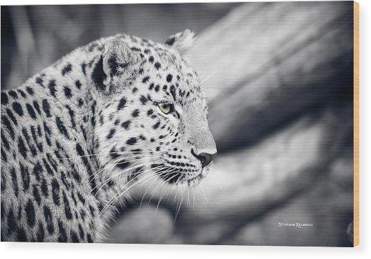 Wood Print featuring the photograph Stalking Prey by Stwayne Keubrick