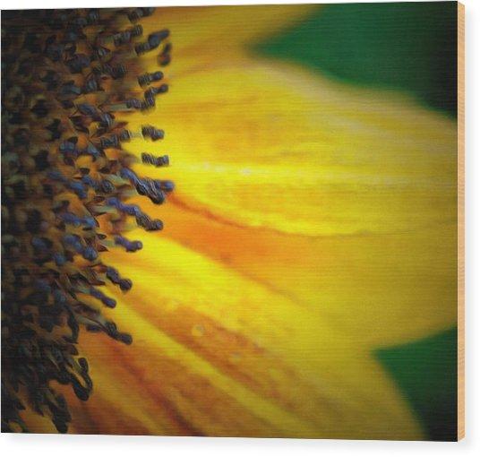 Stamen Velvet Wood Print