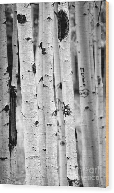 Stand Tall Aspens Wood Print