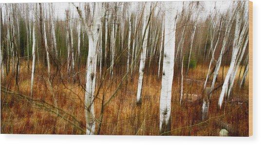 Standing Firm II Wood Print