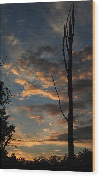 Standing Tall Among The Trees Wood Print