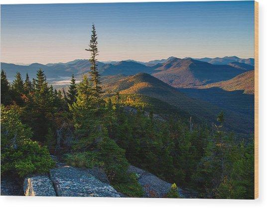 Standing Tall On Mt. Crawford Wood Print
