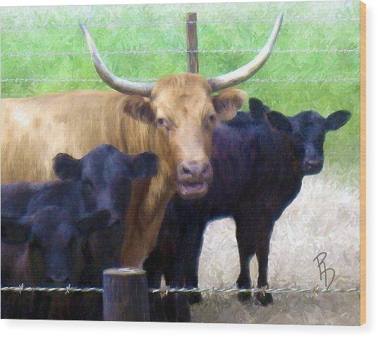 Standout Steer Wood Print