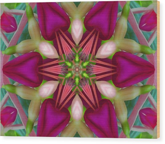 Star Fuchsia 2 Mandala Wood Print
