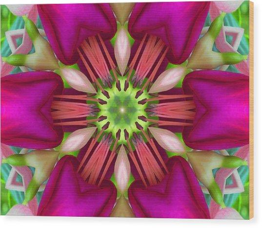Star Fuchsia 3 Mandala Wood Print