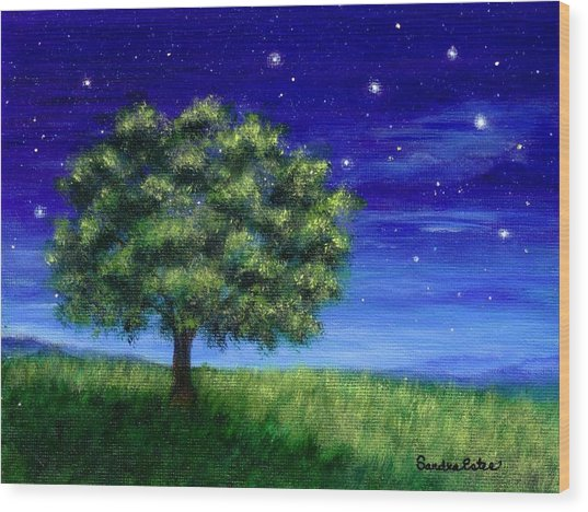 Star Gazing Wood Print