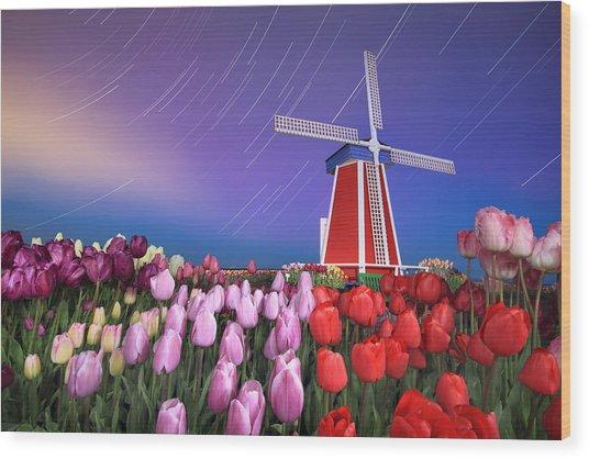 Star Trails Windmill And Tulips Wood Print